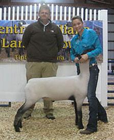 Sark Club Lambs | Winners